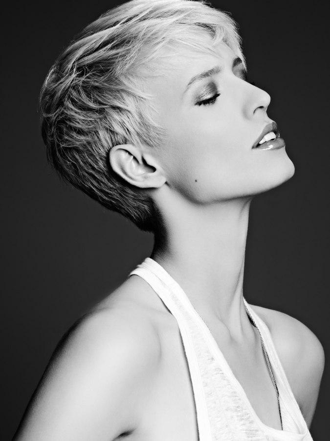 Coiffure Courte Pour Cheveux Gris | Tracy Morris Blog